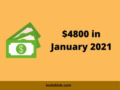 I Made $2695 in November 2020